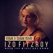 When the Wires Are Down (Kraak & Smaak Remix) von Izo FitzRoy