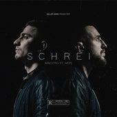 SCHREI (feat. Mois) by Maestro