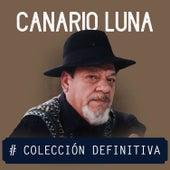 Colección Definitiva by Canario Luna