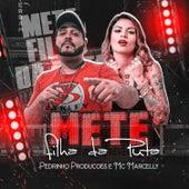 Mete Filha da Puta (feat. MC Marcelly) by Pedrinho Produções