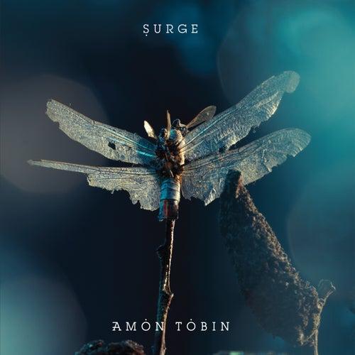 Surge by Amon Tobin