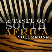 A Taste Of South Africa Vol 1 by Various Artists
