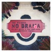 No Drama (TWINSICK Remix) by Two Friends & New Beat Fund