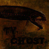 Cold Fish de TV Ghost