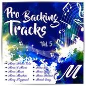 Pro Backing Tracks M, Vol.5 by Pop Music Workshop