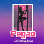 Pegao by Papayo