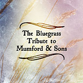 Bluegrass Tribute to Mumford & Sons by Pickin' On