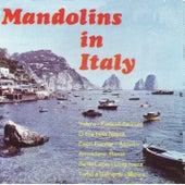 Mandolins in Italy by Das Orchester Claudius Alzner