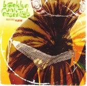 Watcha Playin' by The Brooklyn Funk Essentials