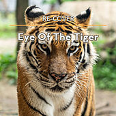 Eye Of The Tiger (Unplugged) by Recover