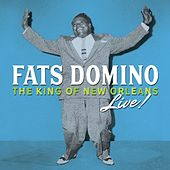 Please Don't Leave Me (Live) by Fats Domino