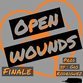 Open Wounds by Finale