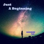 Just A Beginning de Wakamaru Yuto