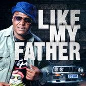 Like My Father by Sosha