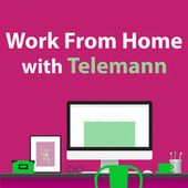 Work From Home With Telemann by Various Artists