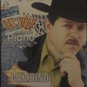 En Vivo Con Acordeon Piano von Gambino