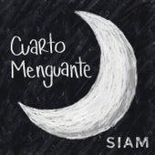 Cuarto Menguante by Siam
