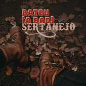 Bateu a Bad Sertanejo de Various Artists