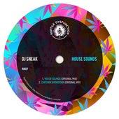 House Sounds von DJ Sneak