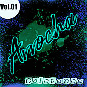 Coletanea Arrocha Vol. 01 de German Garcia