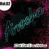 Coletanea Arrocha Vol. 02 de German Garcia