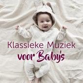 Klassieke Muziek voor Baby's by Various Artists