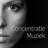 Concentratie Muziek de Various Artists