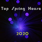 Top Spring House 2020 de Various Artists