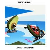 After the Rain de Ludvig Hall