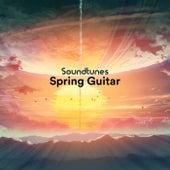 Spring Guitar de Soundtunes