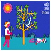 Oak Ash Thorn von Various Artists