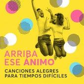 Arriba Ese Animo: Canciones Alegres Para Tiempos Dificiles de Various Artists
