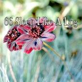 66 Sleep Like a Log de Sounds Of Nature