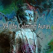 59 Life Calming Auras by Massage Tribe