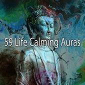 59 Life Calming Auras de Massage Tribe