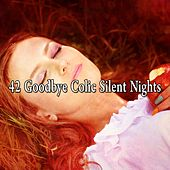 42 Goodbye Colic Silent Nights de Baby Sleep Sleep