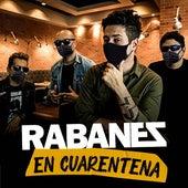 En Cuarentena de Los Rabanes