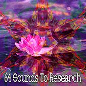 64 Sounds to Research de Zen Meditation and Natural White Noise and New Age Deep Massage