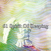 61 Spirit of Sleeping by Ocean Sounds Collection (1)
