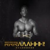 RRRAAAHHH! by Shadow030