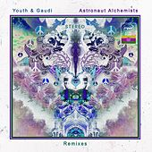 Astronaut Alchemists (Remixes) de Youth