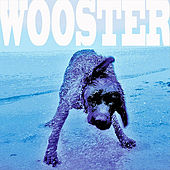 Let's Get Crazy by Wooster