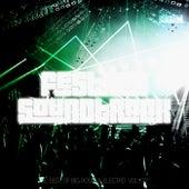 Festival Soundtrack - Best of Big Room & Electro, Vol. 22 von Various Artists