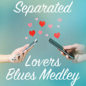 Separated Lovers Blues Medley de Various Artists