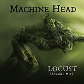 Locust von Machine Head