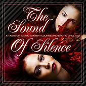 The Sound of Silence, Vol. 1 (A Taste of Erotic Ambient Lounge and Chill Out) de Various Artists