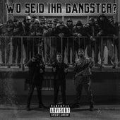Wo seid ihr Gangster? by Majid