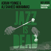 Synchronize Vibration by Adrian Younge