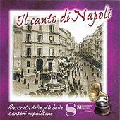 Il canto di Napoli, Vol. 8 by Various Artists