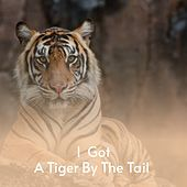 I Got a Tiger By the Tail de Charlie Rich, Waylon Jennings, Benny Martin, Merle Haggard, Charlie Feathers, Don Gibson, Boxcar Willie, Mickey Gilley, Buck Owens, Billy Joe Royal